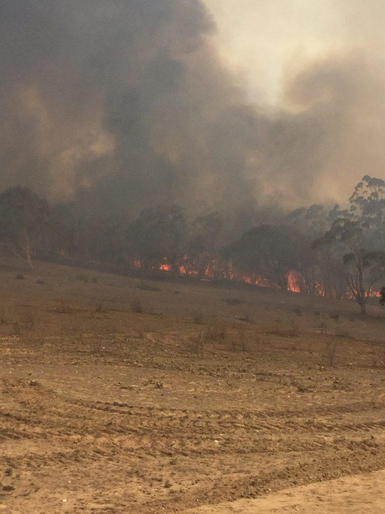 Good Good Fire, Cowra creek